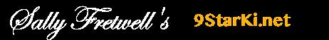 9 StarKi Logo